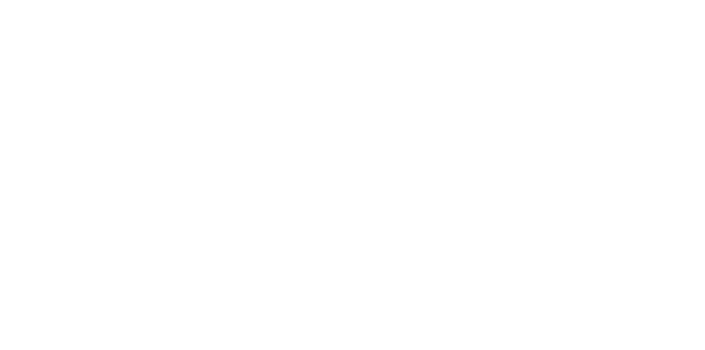 vyair